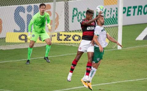 Goiás x Flamengo - Tadeu