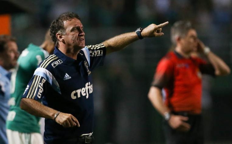 Cuca durante a vitória sobre o Rio Claro (FOTO: Cesar Greco/Palmeiras)