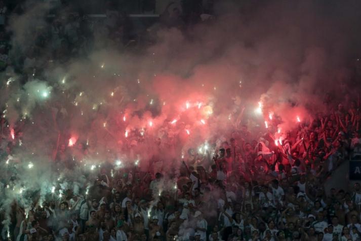 Campeonato Paulista - Palmeiras x São Bernado (foto:Ale Cabral/LANCE!Press)