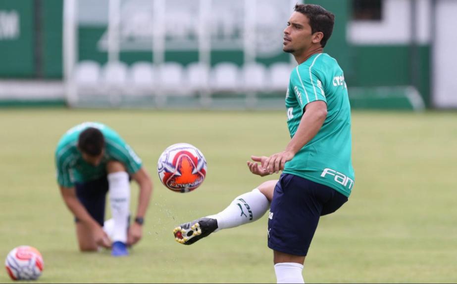 Jean - Palmeiras