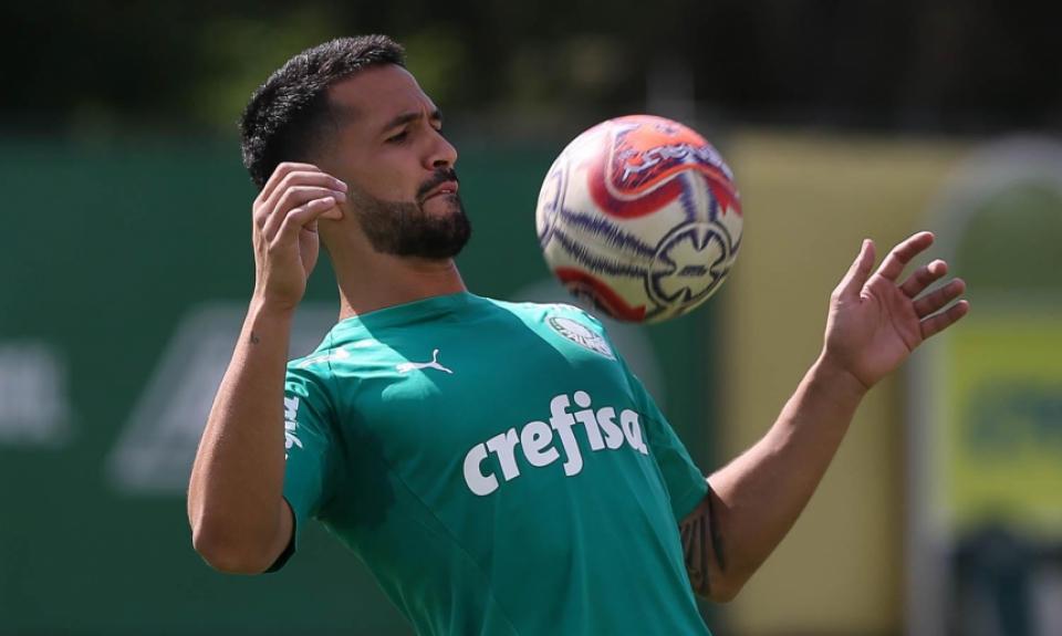 Luan - Palmeiras