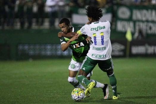 Chapecoense x Palmeiras (Foto:Marcio Cunha/ Mafalda Press)