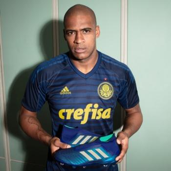 c3304ead5d49b Palmeiras estreará nova camisa de goleiro contra a Chape  veja fotos ...