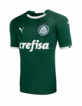 3f766ec1cd Palmeiras lança camisa da Puma com campanha  verde é a cor da inveja ...