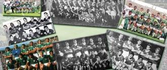 Montagem Palmeiras